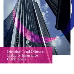 2020 Directors & Officers Insurance Guide