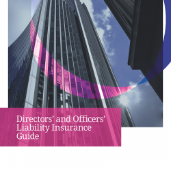 D&O Liability Insurance Guide